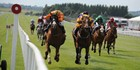 An image labelled The Curragh