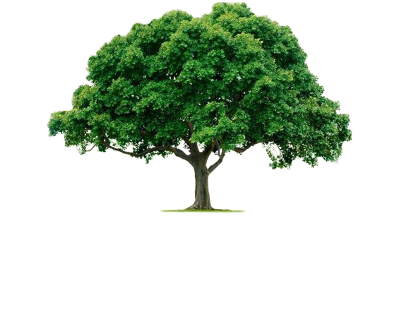 An image labelled Hazelwood Lodge Logo